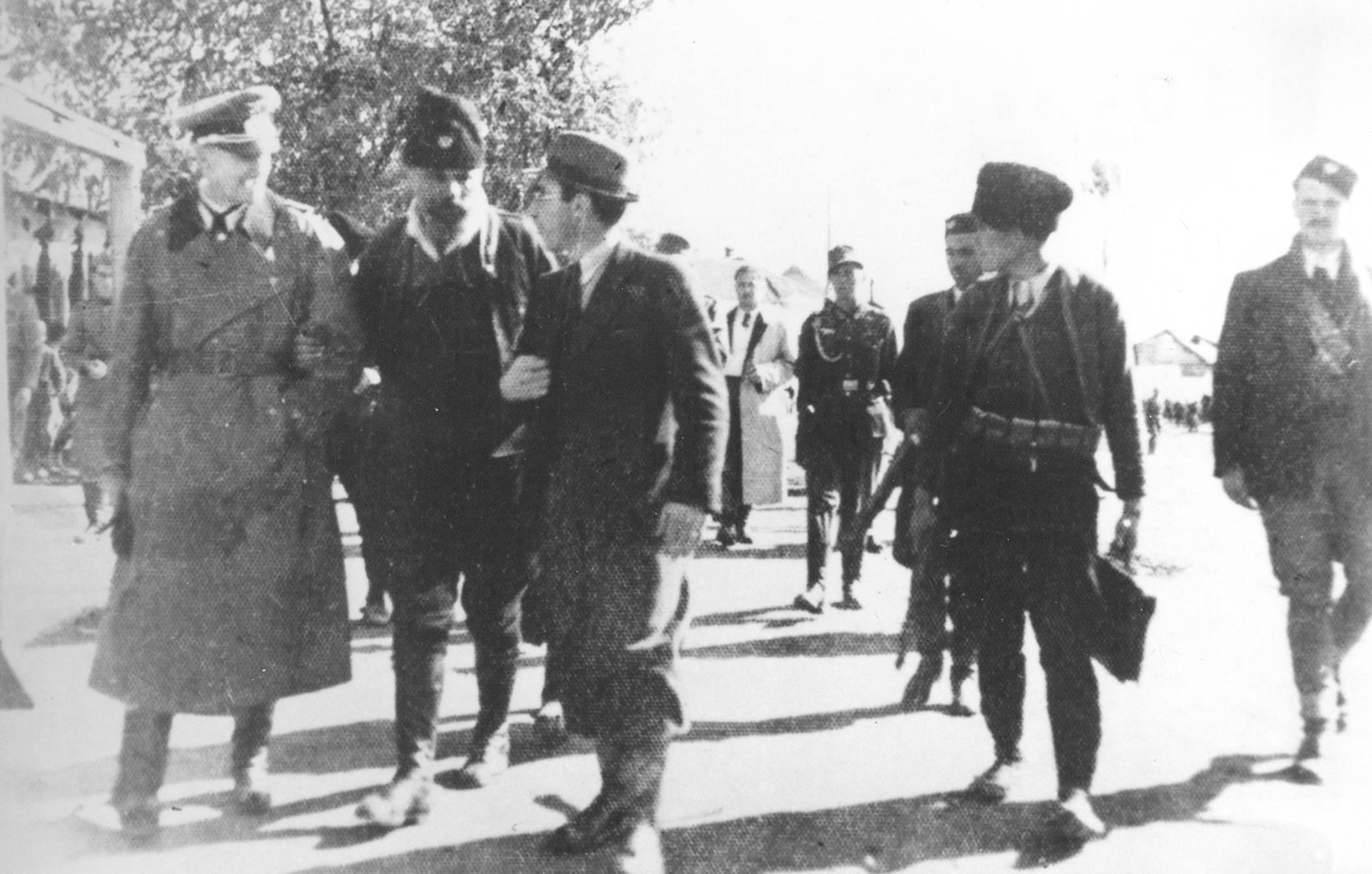 Pecanac and Germans