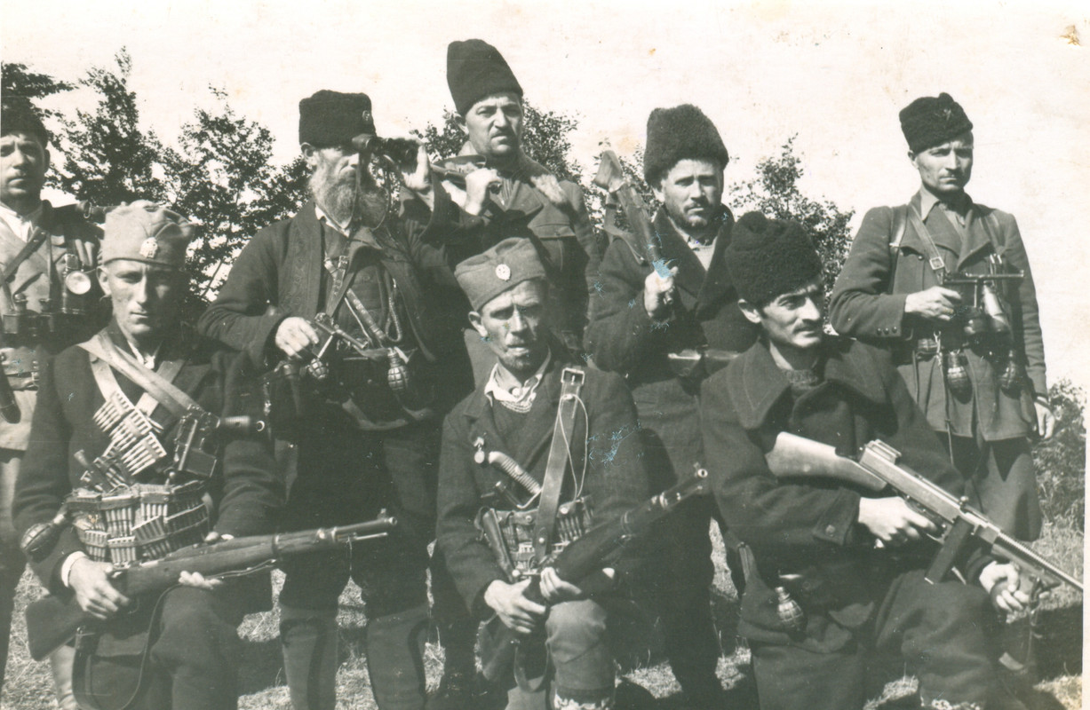 Chetniks and Partisans around Negotin Region
